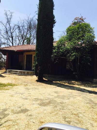 Visalia Single Family Home For Sale: 2705 S Burke