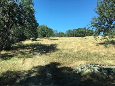 Madera County Farm For Sale: Savage Road