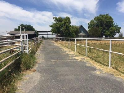 Kings County, Merced County Farm For Sale: 6691 G Street