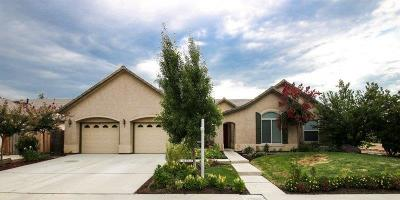 Reedley Single Family Home For Sale: 349 S Willow Glenn Drive