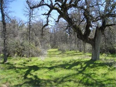 Oakhurst Residential Lots & Land For Sale: West Oaks