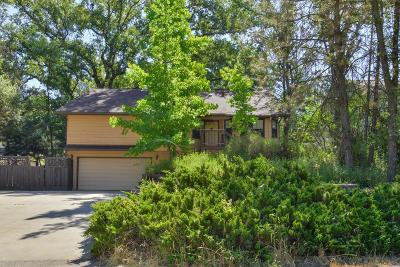 Oakhurst Single Family Home For Sale: 40815 Griffin Drive