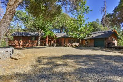 Oakhurst Single Family Home For Sale: 52022 Courtney Lane