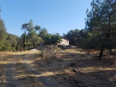 Coarsegold Single Family Home For Sale: 44901 Douglas S