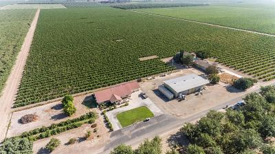 Fresno County Farm For Sale: 20838 W Dakota Avenue