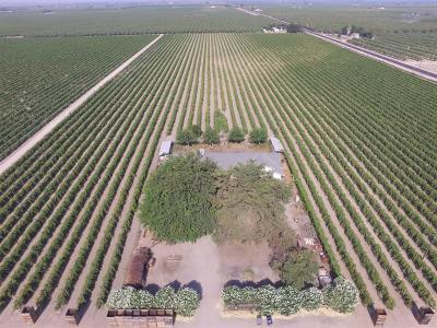 Fresno County Farm For Sale: 2885 N Lassen Avenue