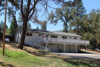 Oakhurst Single Family Home For Sale: 45534 N Oakview Drive