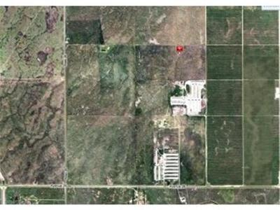 Madera County Farm For Sale: Ave 26
