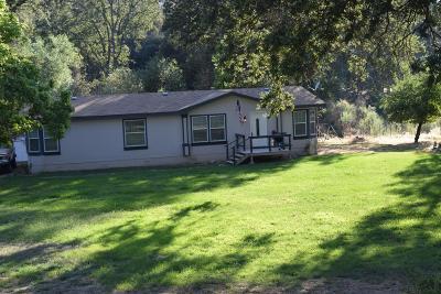 Oakhurst Single Family Home For Sale: 39600 Evergreen Drive