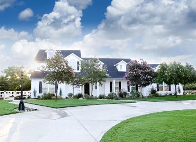 Clovis Single Family Home For Sale: 9180 N Punjab Avenue