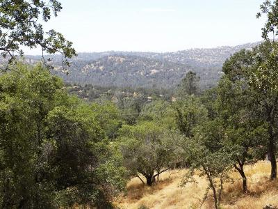 Coarsegold Residential Lots & Land For Sale: E Revis Lane #Lot 470