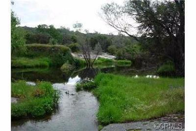 Coarsegold Residential Lots & Land For Sale: Picayune Creek Court
