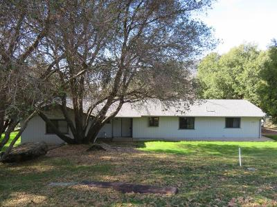 Ahwahnee Single Family Home For Sale: 45088 Nip View Circle