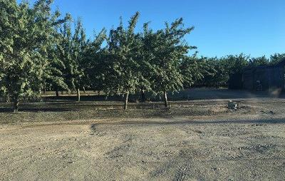 Madera County Farm For Sale: 11325 Road 30 1/2