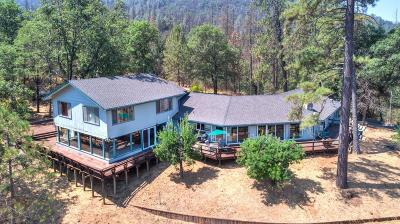 Mariposa County Single Family Home For Sale: 6575 Highway 140