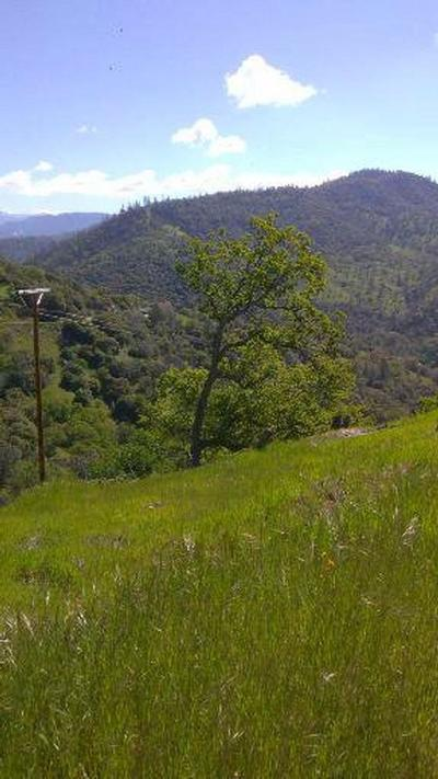 Coarsegold Residential Lots & Land For Sale: Lazy L Summit Road #39.07 AC