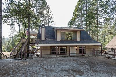 Bass Lake Single Family Home For Sale: 39657 E Idylwild