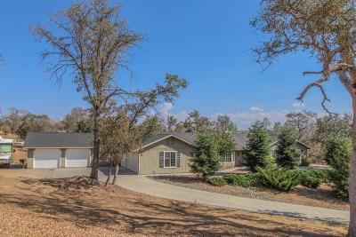Coarsegold Single Family Home For Sale: 41737 Horseshoe Way