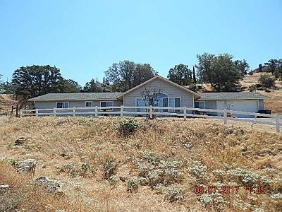 Coarsegold CA Single Family Home For Sale: $260,000