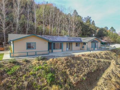 Ahwahnee CA Single Family Home For Sale: $419,000