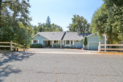 Oakhurst Single Family Home For Sale: 50128 Deer Meadow Way