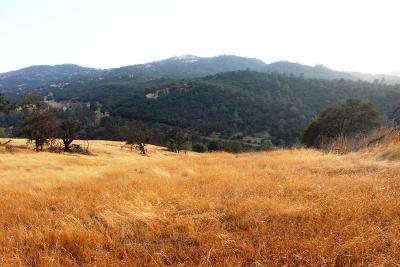 Mariposa Residential Lots & Land For Sale: 5454 Pearce Ranch Road