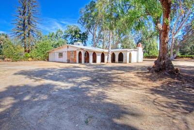 Fresno Single Family Home For Sale: 4554 N Fruit Avenue
