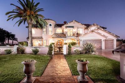 Single Family Home For Sale: 4738 W Alluvial Avenue