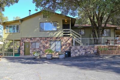 Oakhurst Single Family Home For Sale: 50689 Critter Creek Lane