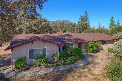 Oakhurst Single Family Home For Sale: 38362 Crestview Lane