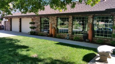 Single Family Home For Sale: 1787 S Homsy Avenue