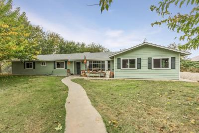 Reedley Single Family Home For Sale: 4735 S Englehart Avenue