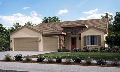 Visalia Single Family Home For Sale: 816 Copper Avenue