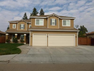 Fresno Single Family Home For Sale: 5561 E Pitt Avenue