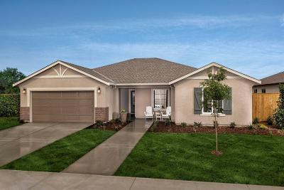 Fresno Single Family Home For Sale: 5448 E Laurite Avenue