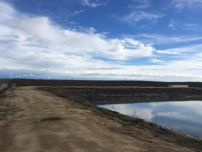 Madera County Farm For Sale