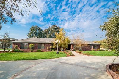 Lemoore CA Single Family Home For Sale: $750,000