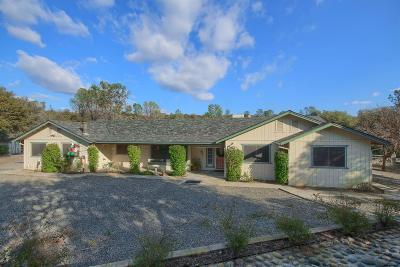 Coarsegold CA Single Family Home For Sale: $380,000