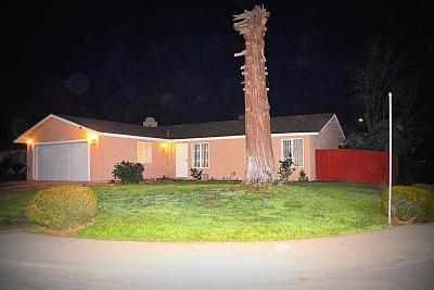 Sanger Single Family Home For Sale: 989 Holt Avenue