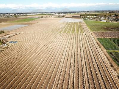 Fresno County Farm For Sale: Apn 332-110-74 Bethel