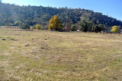 Clovis Residential Lots & Land For Sale: 27466 Twin Ponds Road