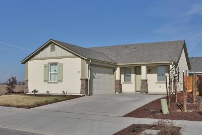 Hanford Single Family Home For Sale: 1978 W Summer Blossom Way
