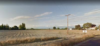 kingsburg Residential Lots & Land For Sale: 40090 Road 32