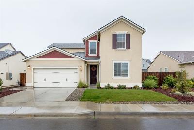 Fresno Single Family Home For Sale: 6676 E Saginaw Way