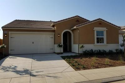 Clovis Single Family Home For Sale: 3880 Saginaw Avenue