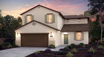 Fresno Single Family Home For Sale: 6893 W Parr Avenue #84