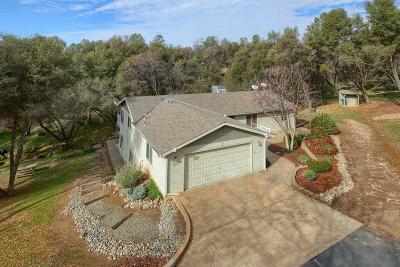 Madera County Single Family Home For Sale: 51757 Quail Run Drive
