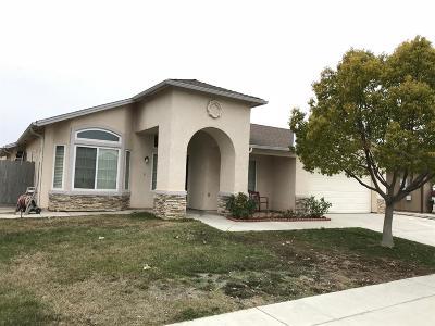 Fresno Single Family Home For Sale: 1691 N Cecelia Avenue