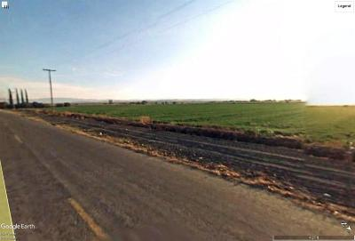 Merced County Farm For Sale: Ramos Road
