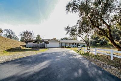 Madera County Single Family Home For Sale: 46096 Spring Trail